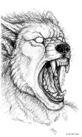 Pen Sketchbook -Snarl Growl by synnabar