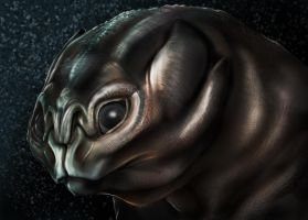 Alien Concept by franeres