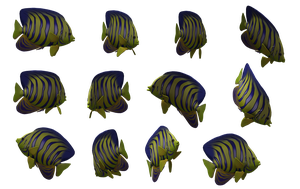 Fish Set 01 by Free-Stock-By-Wayne