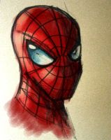 Spider-Man whatever by lord-phillock