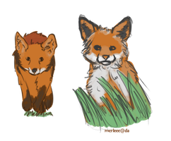 Foxes by Merleee