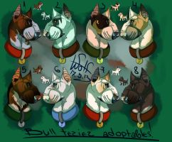 Bull terrier adoptables CLOSED by TheWolfMadness