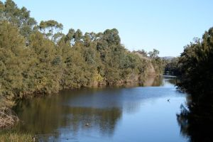 The River Nepean by Orstrix