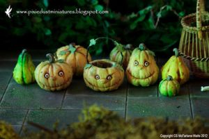 Miniature Warty Pumpkins and Squash by CaroMcFW