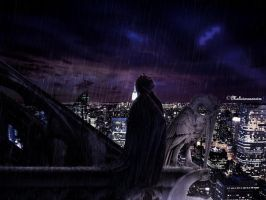 Batman - Alone in the dark by MaliciaRoseNoire