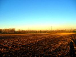 Country Field by ElaineG
