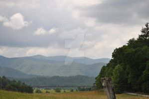 Tennessee 3 by the-shmegster