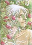 PSC - Strawberries and Fenris by aimo