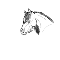 Horse by TayMay135