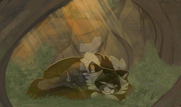 Warrior Cats| The Last One by DragonWarriorCat