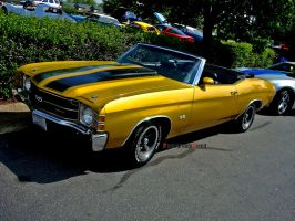 Golden SS by PhotographiCreed