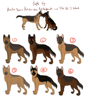 OPEN -GSD Puppies for Adoption - KaiserXAlice by SirJudeNolan