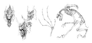 Roid bat studies by muju