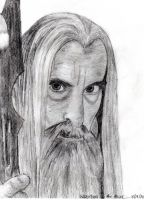 Saruman the White by AinuLaire