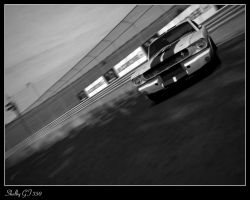 Shelby GT350 by Darthpickle