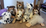 Webkinz lot for sale/trade by aj-falls-in-love