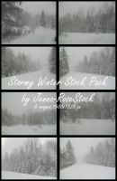 Stormy Winter Pack by Jenna-RoseStock