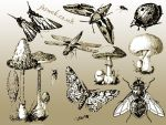 Insects And Mushroom Vectors by gojol23