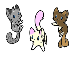Kitty Adopts Batch #1 by Heavens-Adoptables