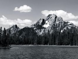 Mount Moran from the Lake (Black and White) by DragonflyMizu