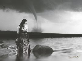 The Storm by cherie-stenson