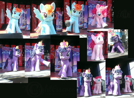 My Little Ponies At The Calgary Stampede by Twiinyan