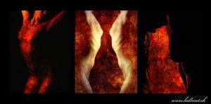 Narcism triptych by hellmet
