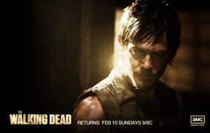 The Walking Dead Daryl Wallpaper by jevangood