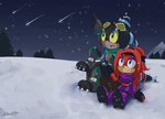 Birthday Gift: Stargazing With You by RecklessKaiser