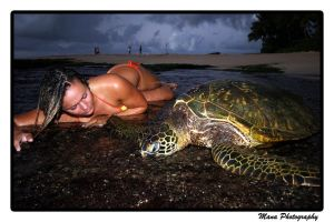 Turtle Love by manaphoto