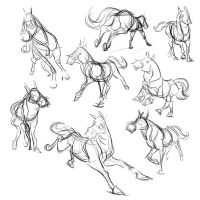 Some Studies of Horse Movement by Totalmeep