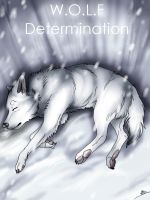 'W.O.L.F Determination' book cover by wolfinrahalify