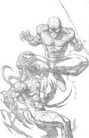 Spidey and Carnage by RudyVasquez