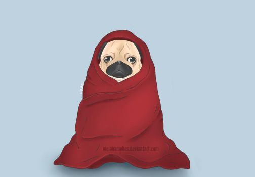 The cold pug by melanamobes