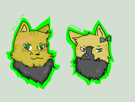 2p Headshots by AskPennCat
