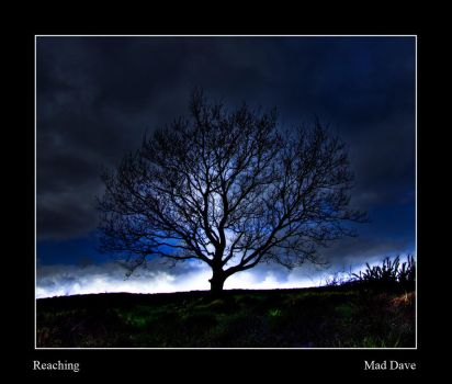 Reaching by mad1dave