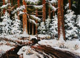 winter in the woods by dusanvukovic
