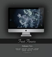 Frost Flowers -Wallpaper Pack- by CayaStrife