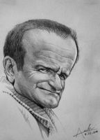 robin williams caricature by Nico4blood