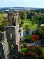 Blarney Castle by serel