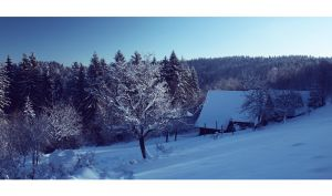 winter view 2 by Artush