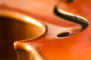 Portrait of a Violin by TheTruthSeeker