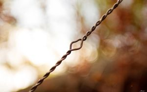 Unbarbed Wire by MattLanham
