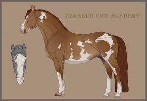 Traaker Import 10 | Closed | PREGNANT by BRls-love-is-MY-Live