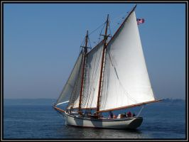 Wind Jammer by cove314