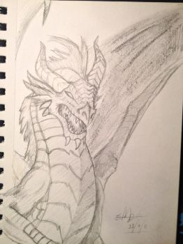 Sketchbook - Dragon by shudso