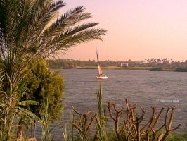 The Nile 05 by thefreewolf