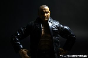 WWE action figures part1 by vhive
