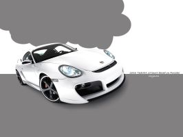 2006 TechArt GTsport Porsche by Shaggy87