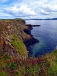Isle of Staffa by Pania-of-the-Reef